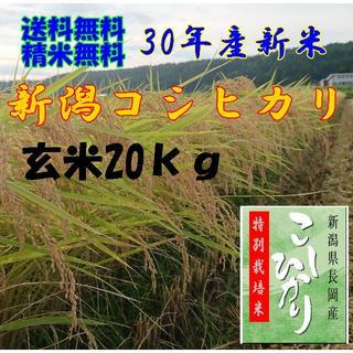 農家直送!新潟コシヒカリ玄米20kg