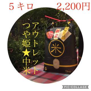 大特価!!中米☆新米☆宮城県産つや姫5キロ