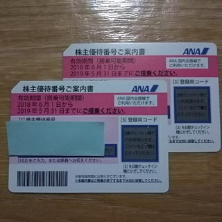 ANA 株主優待券 2枚 2019年5月31日まで クリックポスト(航空券)