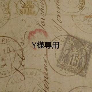 Y様専用(ポップス/ロック(邦楽))