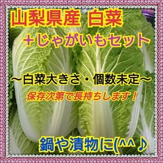 【山梨県産】白菜&じゃがいも(北海こがね)セット