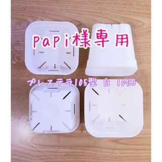♡プレステラ105型 人気のホワイト♡新♡10個♡(その他)