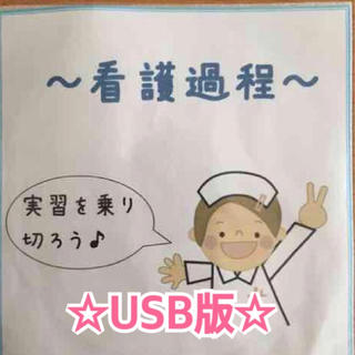 看護実習完璧!!看護過程ソフト☆USB版☆(健康/医学)