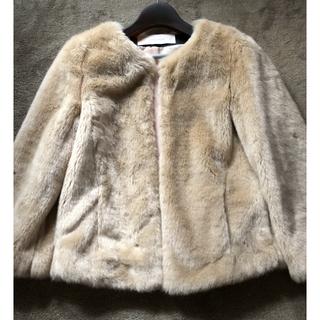 ザラ(ZARA)のファージャケット(毛皮/ファーコート)
