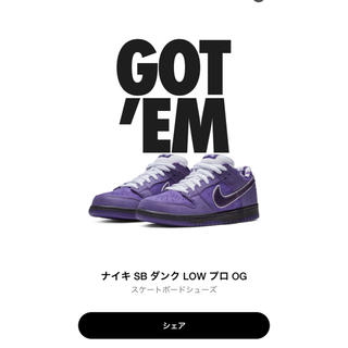 NIKE - NIKE SB DUNK LOW PURPLE lobster