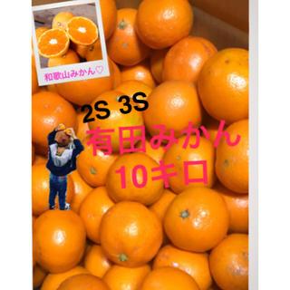 和歌山 有田みかん3S〜2S10キロ 小粒 残りわずか(フルーツ)