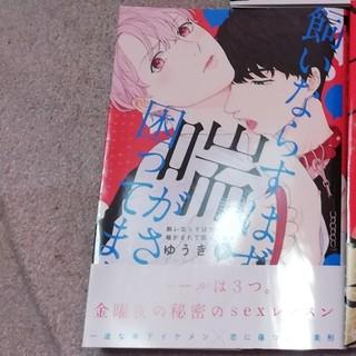 ☆chi-mo様専用 BLコミック☆2冊セット(BL)