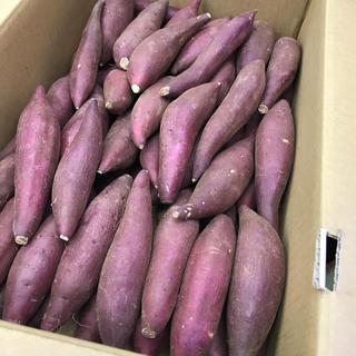 ☆新品種☆ 茨城県産 シルクスイート  4キロ