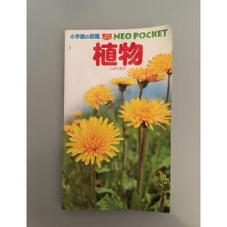 ショウガクカン(小学館)の小学館の図鑑 ネオポケット 植物(絵本/児童書)
