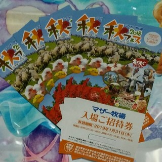 kikirara☆さま専用マザー牧場 入園ご招待券5枚 2019年1月31日まで(遊園地/テーマパーク)