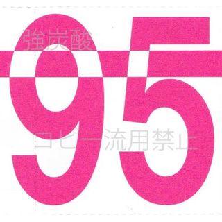 C95 コミケ サークルチケット 2日目(その他)