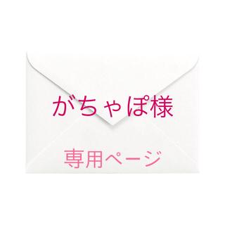 がちゃぽ様 本注文ページ(その他)