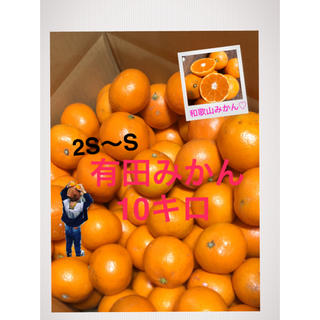 和歌山 有田みかん2S〜S 10キロ 中生 晩生(フルーツ)