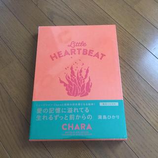 ビームス(BEAMS)のCHARA LITTLE HEART BEAT(ミュージシャン)