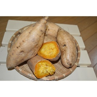鹿児島県産 マロンゴールドさつまいも 5kg(野菜)