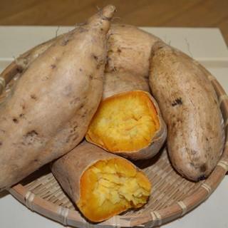 鹿児島県産!マロンゴールドさつまいも 20kg(野菜)