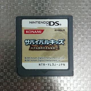 ニンテンドーDS(ニンテンドーDS)のDS サバイバルキッズ(携帯用ゲームソフト)