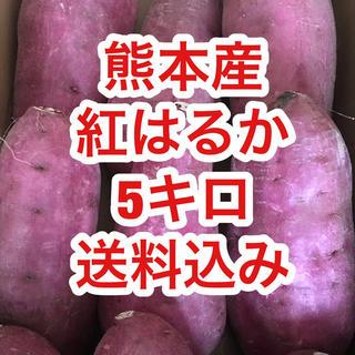 熊本県産  紅はるか 秀品 5キロ  3L〜4Lサイズ 送料込 期間限定値下げ