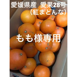 愛媛県産  愛果28号(紅まどんな)(フルーツ)