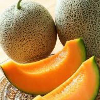 宮古島産  ✨今が旬✨赤肉メロン(2玉)(フルーツ)
