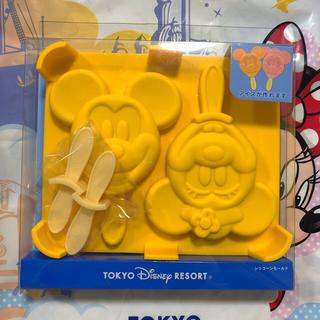 Disney - 新作♡ シリコンモールド ミッキー ミニー アイス ディズニーリゾート