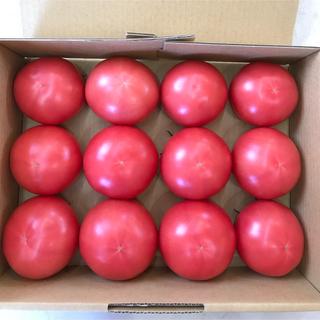 大玉トマト12個セット(2kg箱)(野菜)
