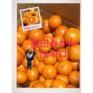 リーメイ 様専 和歌山有田みかん 3S極小サイズ10キロ(フルーツ)