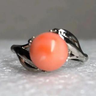 大粒天然桃珊瑚8.0mmのシルバーリング(リング(指輪))
