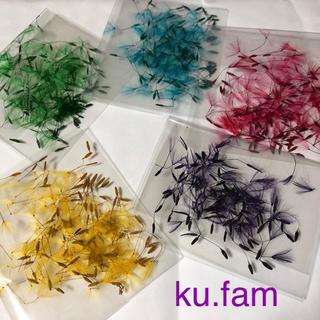 たんぽぽの綿毛 綿毛カラー 綿毛のみ 250本 ドライフラワー ku.fam(ドライフラワー)