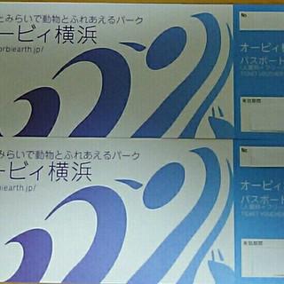 オービィ横浜  パスポート(入館料+フリーパス)(遊園地/テーマパーク)