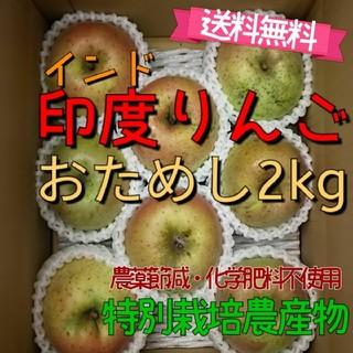 印度りんご2kg送料無料【特別栽培】福島市(フルーツ)