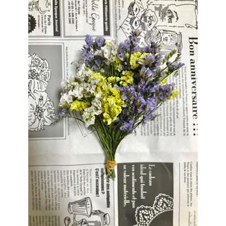 【3色】ハイブリッドスターチス 黄、紫、白 40本 10㎝(ドライフラワー)