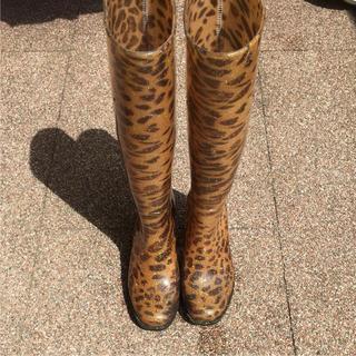 ヌォーボ(Nuovo)の長靴  豹柄    M   nuovo(レインブーツ/長靴)