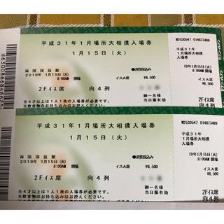 大相撲 平成31年一月場所 初場所 椅子席A 1/15(相撲/武道)