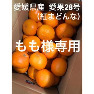 愛媛県西宇和産  あいか(紅まどんな)(フルーツ)