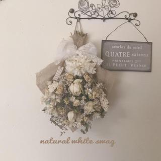 natural white swag(ドライフラワー)
