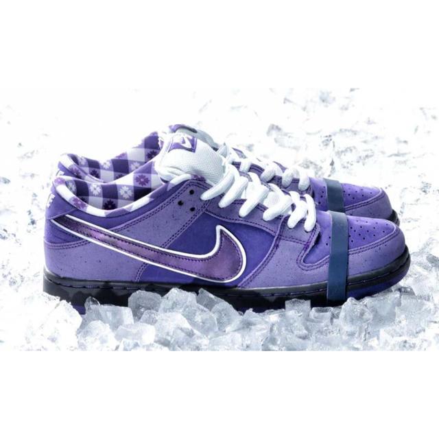 NIKE(ナイキ)の国内正規品 28 NIKE SB DUNK LOW PURPLE LOBSTER メンズの靴/シューズ(スニーカー)の商品写真