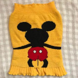 ディズニー(Disney)のマタニティ ディズニー ミッキー 腹巻き パンツ(マタニティ下着)