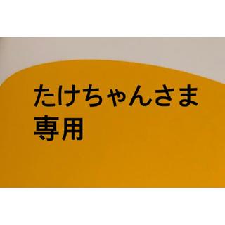 たけちゃんさま専用 東京講演会 1/6 1枚(トークショー/講演会)