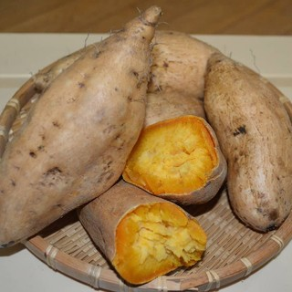 マロンゴールドさつまいも 5kg(野菜)