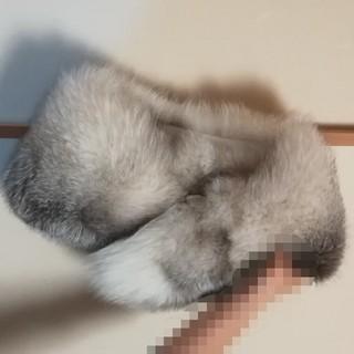 サガフォルム(Sagaform)の【値下げok】豪華!SAGA FOX ストールファー(毛皮/ファーコート)