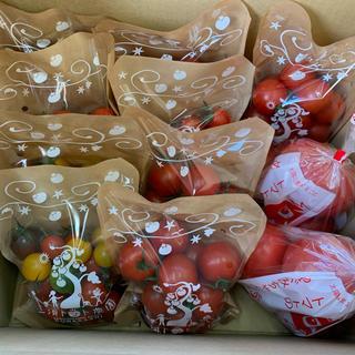 〈お得セット〉大玉&ミニセット11袋 3キロ(野菜)