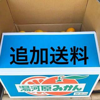 北海道追加送料(フルーツ)