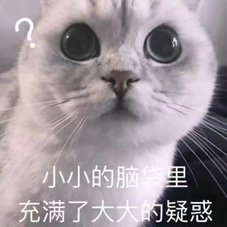 シュプリーム(Supreme)の1(ローファー)