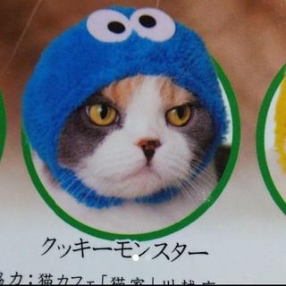 セサミストリート(SESAME STREET)のねこのかぶりもの セサミストリート クッキーモンスター(猫)