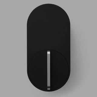 ソニー(SONY)のキュリオロックQ-SL2 替え電池付(その他)