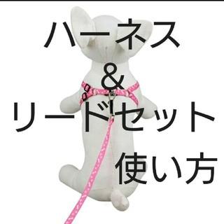 使い方❤️ハーネス&リードセット(犬)