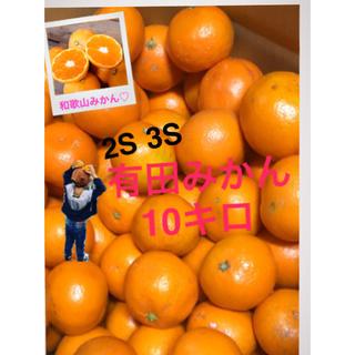 和歌山 有田みかん2S〜3S10キロ(フルーツ)