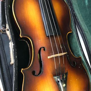スズキ(スズキ)のスズキ   バイオリン(ヴァイオリン)