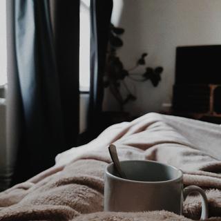 ▼ Sofa bed / BRN(ソファベッド)